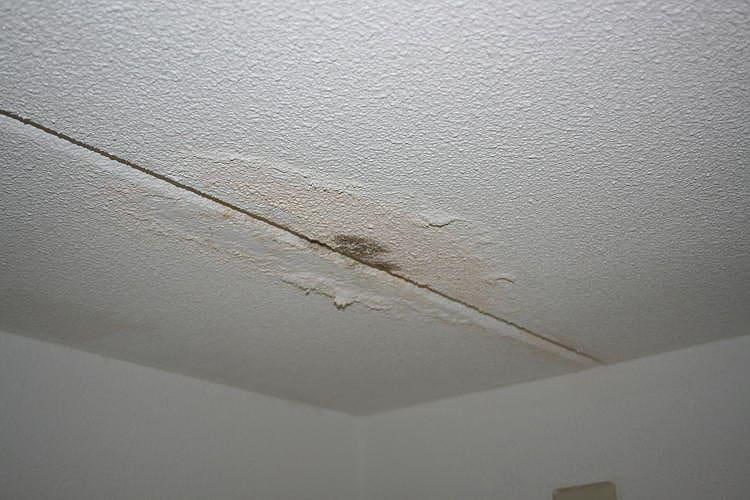 waterschade aan een plafond herstellen in omgeving rotterdam